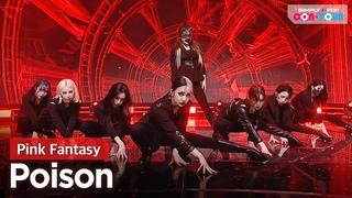 [Simply K-Pop CON-TOUR] Pink Fantasy - Poison _