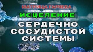 Матрица Гаряева Коррекция Сердечно сосудистой Системы (РЕГЕНЕРАЦИЯ)