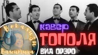 Тополя кавер песни ВИА Орэра от Valentine`s Vocalise