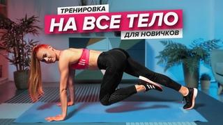 Тренировка на все тело для новичков   Пресс, ягодицы, ноги, спина, руки   PopSport