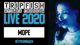 TripFish - LIVE - Море