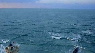 Если Вы Увидите Квадратные Волны в Море, Немедленно Выходите из Воды