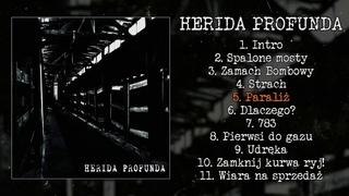 Herida Profunda - s/t LP FULL ALBUM (2013 - Crust Punk / Grindcore)