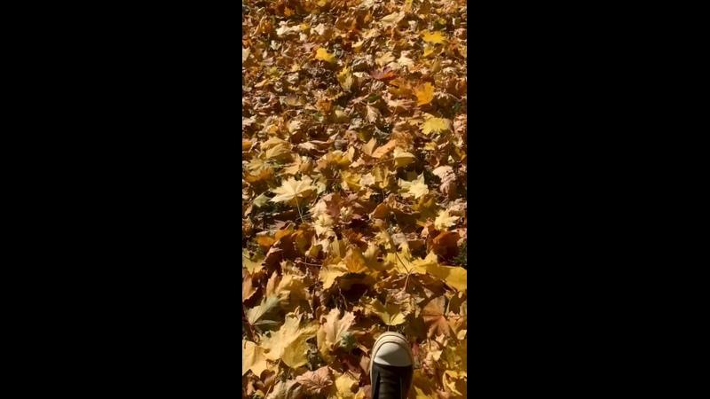 Видео от Эльдара Галимова