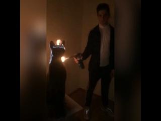 Video by Genius Over Death. Первый блог.