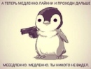 Личный фотоальбом Никиты Данечкина