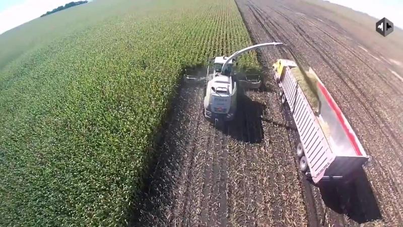 Американские фермеры уборка урожая.