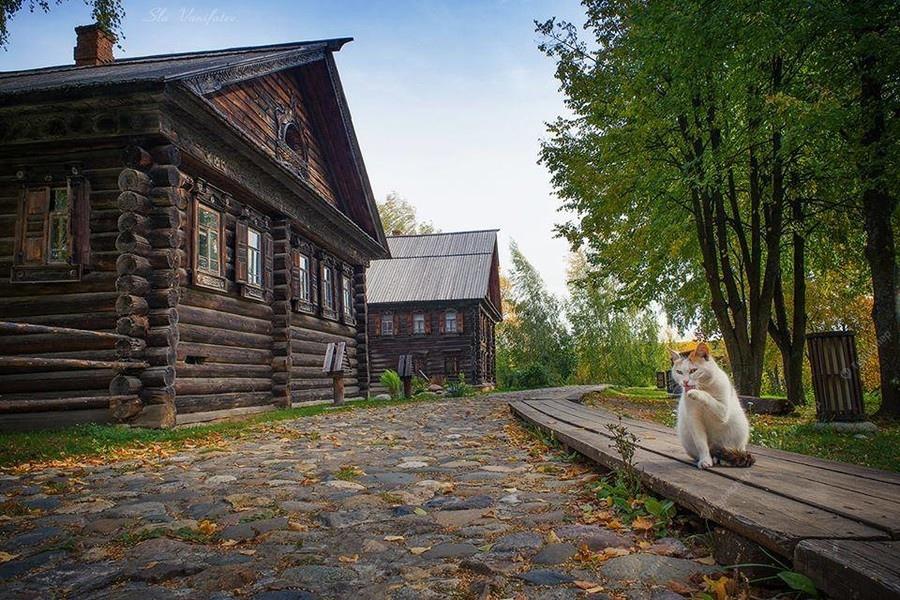 Кострома. Портрет города
