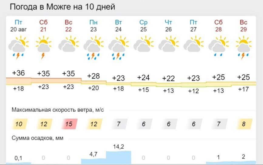 Такая сильная жара пробудет в Можге недолго.