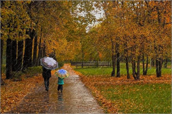 В выходные синоптики прогнозируют дождь в Самарской облас...
