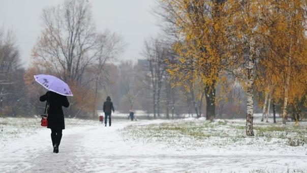 После потепления до +16 градусов в Кузбассе похоло...