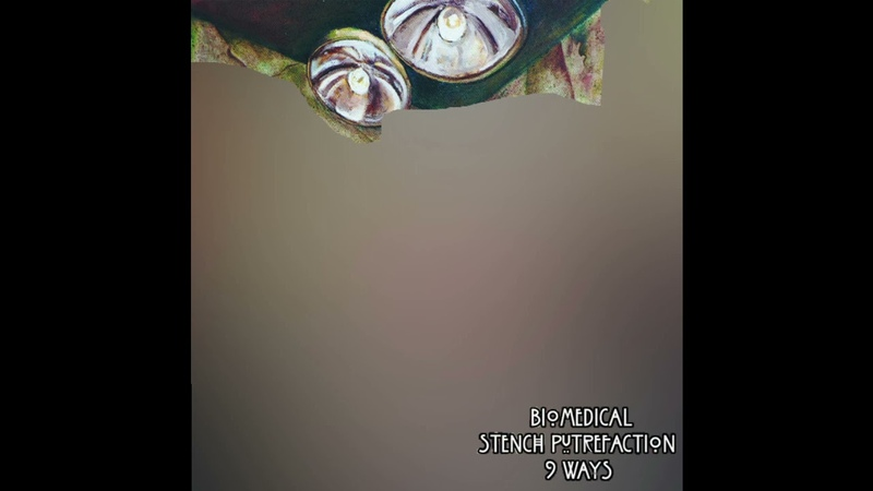 Biomedical Stench Putrefaction 9 Ways full split